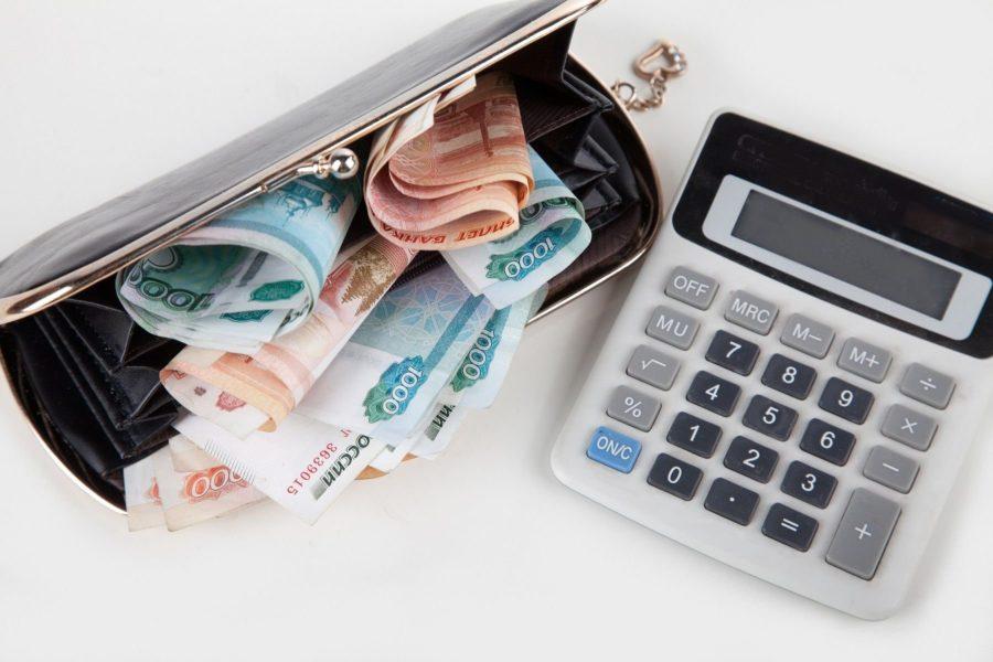 Размер дохода самозанятого